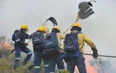 SANParks update: Cape Point fires