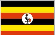Nikiwe Bikitsha heads to Uganda's Kampala (and she needs your ideas!)