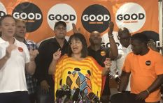 Patricia de Lille: We can't just blame one another, we need to offer solutions
