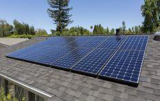 Solar power is 90% cheaper than it was 20 years ago - analyst