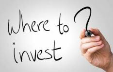 What are the best investment options if you decide to go it alone?