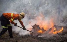 Insurance companies to speedily deal with Knysna fire claims