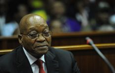 Political Desk: 'The purpose was to punish Zuma with that (R10m) legal bill'