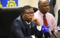 Fikile Mbalula says he will intervene in Phahlane/Ipid saga