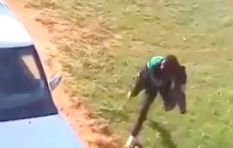 [VIDEO] Man shot outside Mpumalanga high school after attacking police