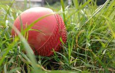 Sports Item | South Africa Vs Bangladesh