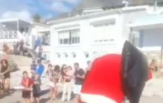 [WATCH] Capetonian beach-goers amused as Santa falls face first off boat
