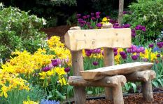 Want a luscious garden? Very chuffed 702 listener vouches for Freestyle Garden
