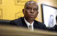 Mashaba's responsibility not triggered by protests, says DA MPL