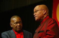 'Nzimande was removed because of calls for Zuma to step down'
