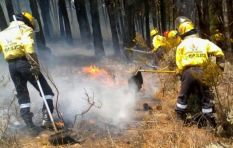 'No evidence suggests next fire season in Cape will be anything out of ordinary'