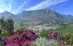 Safety forum boosts security at Table Mountain National Park