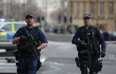 Increased police presence, several arrests as UK parliament opens for business