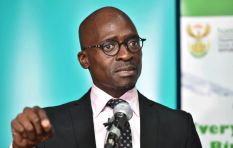 Gigaba throws SA tourism a lifeline, backtracks on foreign minor travel rules