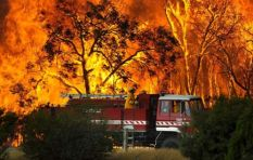 Strong winds stoke more than 100 bushfires across Australia