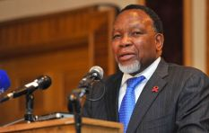 Motlanthe never mentioned the Guptas as a factor in the ANC crisis - analyst