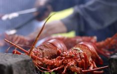 West Coast rock lobster dwindling due to poaching, says fisheries prof