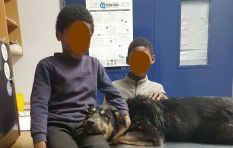 Two young boys go the extra mile to get a sick dog to a vet with just R7