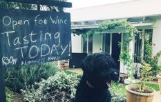 Made in Jozi: Johannesburg's first winery takes off