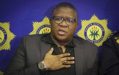 Fikile Mbalula: 'I paid for my own [Dubai] trip'