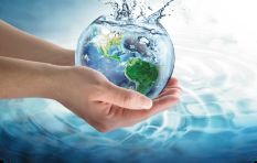 Report attributes high water usage in South Africa to the agriculture sector