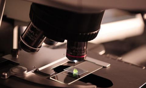 microscope-385364-960-720jpg