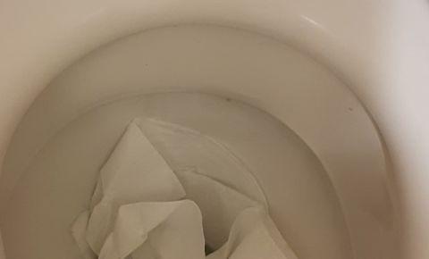 toilet-4jpg