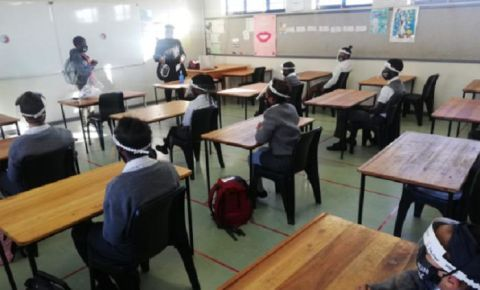 Western Cape grade 7 pupils