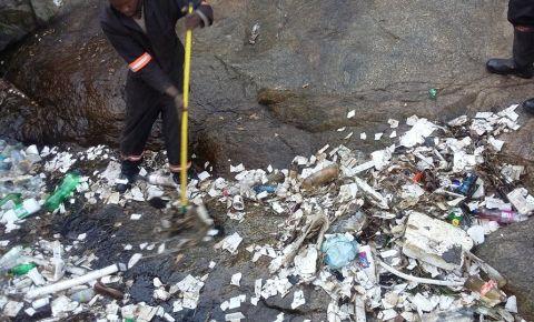 skeem-waste-collectorsjpg