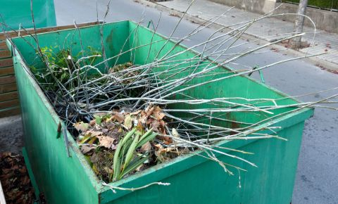 garden-waste-removal-recycling-refuse-container-tree-branches-gardening-123rf