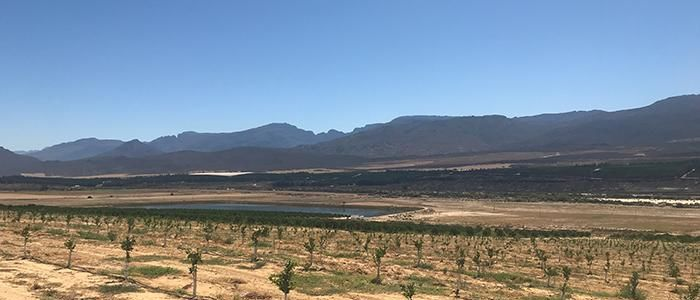 Western Cape farms