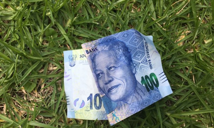 Should Zimbabwe officially join South Africa in a monetary union?