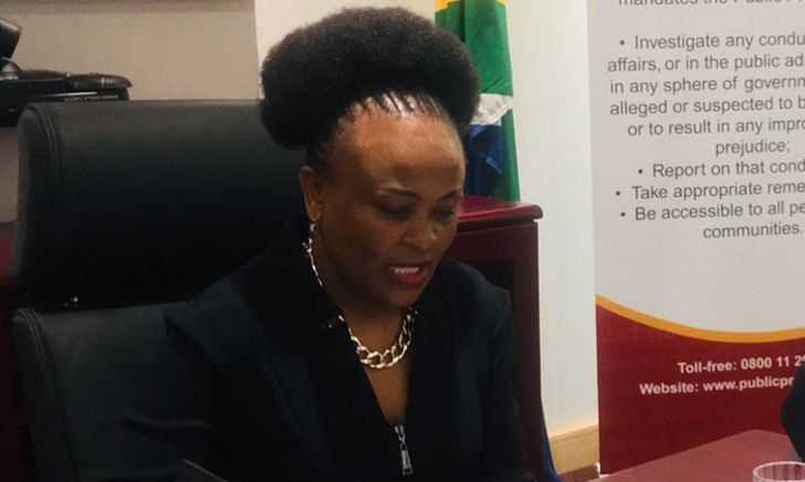 Estina Dairy Report: 'Public Protector's argument does not hold weight'