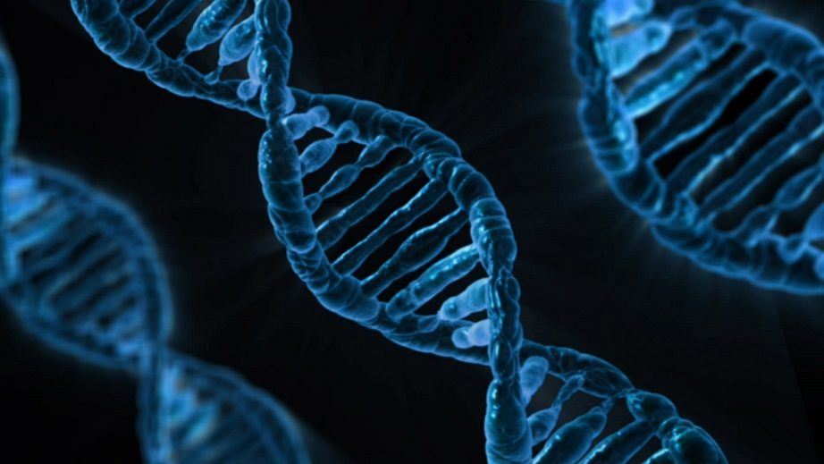 How the discovery of DNA 65 years ago totally revolutionised medical science - CapeTalk