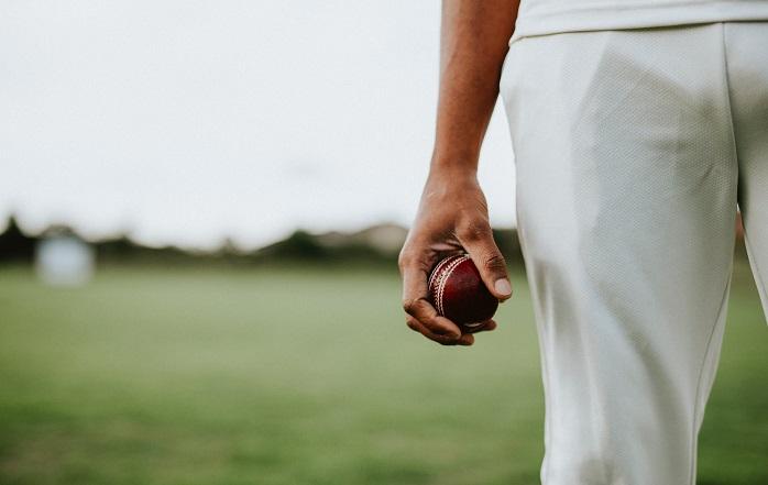 Cricket. Picture: Pexels.com.
